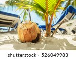 coconut with two straws on a... | Shutterstock . vector #526049983