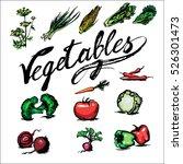 tomato  fennel  corn  cabbage ... | Shutterstock .eps vector #526301473