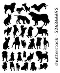 Stock vector dogs silhouettes set 526366693