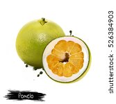 pomelo with half of pomelo... | Shutterstock . vector #526384903