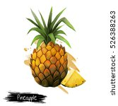 pineapple fruit  leaf and... | Shutterstock . vector #526388263