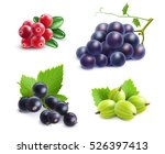 realistic berries set with... | Shutterstock .eps vector #526397413