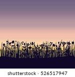 a summer field grass sunset...   Shutterstock .eps vector #526517947