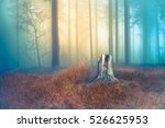 old gray tree stump in dry... | Shutterstock . vector #526625953