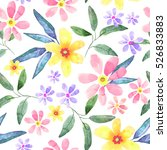 floral seamless pattern with... | Shutterstock . vector #526833883