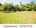 abstract blur city park bokeh... | Shutterstock . vector #527017513