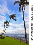 Small photo of Palm trees and lush green grass adjoin a path at the edge of the ocean.