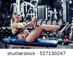 young fitness woman execute... | Shutterstock . vector #527130247