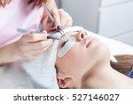 beautician making artificial... | Shutterstock . vector #527146027