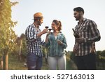 happy wine tourists tasting... | Shutterstock . vector #527163013