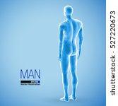 3d standing man  full length ... | Shutterstock .eps vector #527220673