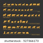 vector gold set of silhouettes... | Shutterstock .eps vector #527366173