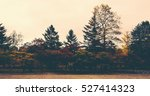 the autumnal tints. | Shutterstock . vector #527414323