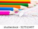 multi colored pencils and... | Shutterstock . vector #527513497