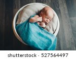 a baby in a basket sleeping and ... | Shutterstock . vector #527564497