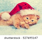 Little Kitten Wearing Santa Ha...