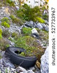 Old Abandoned Tires In An...