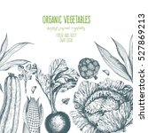 organic food card design.... | Shutterstock .eps vector #527869213