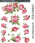 set of traditional flowers and...   Shutterstock .eps vector #528158863