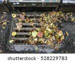 Autumn Leaves On City Drain...