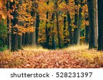 woman standing at the end of...   Shutterstock . vector #528231397