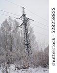 Power Lines In Winter Woods