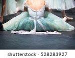 ballerinas in the movement....   Shutterstock . vector #528283927