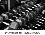 rows of dumbbells in the gym | Shutterstock . vector #528299203