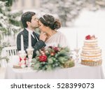 winter wedding    | Shutterstock . vector #528399073