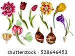 big set of watercolor spring... | Shutterstock . vector #528646453