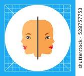 psychology flat icon | Shutterstock .eps vector #528757753