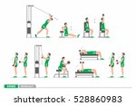 set of workout for arms | Shutterstock .eps vector #528860983
