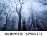 mysterious cemetery in misty... | Shutterstock . vector #529003543