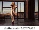 beautiful ass. ass  on the... | Shutterstock . vector #529029697