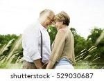 elderly senior couple romance... | Shutterstock . vector #529030687