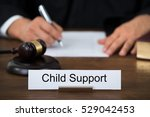 child support legal court | Shutterstock . vector #529042453
