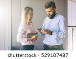 businesswoman and bearded... | Shutterstock . vector #529107487