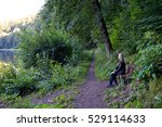 man sitting on a bench beside... | Shutterstock . vector #529114633