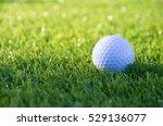 golf ball on course in summer   Shutterstock . vector #529136077
