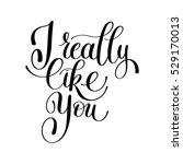 love letter  i really like you  ... | Shutterstock . vector #529170013