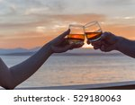 toasting the good life   Shutterstock . vector #529180063