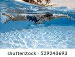 portrait of a female swimmer ... | Shutterstock . vector #529243693