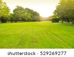 the chatuchak park is an... | Shutterstock . vector #529269277