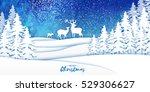 Merry Christmas Snow Winter...