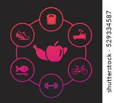 healthy lifestyle icons set ... | Shutterstock .eps vector #529334587