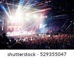 Crowd At A Rock Concert...