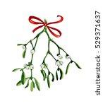 watercolor christmas branch of... | Shutterstock . vector #529371637
