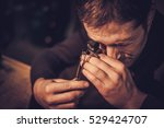 jeweler during the evaluation... | Shutterstock . vector #529424707
