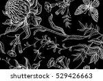 exotic flowers and butterflies. ... | Shutterstock .eps vector #529426663