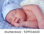 little newborn baby | Shutterstock . vector #529516633